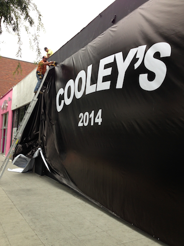 Cooley's