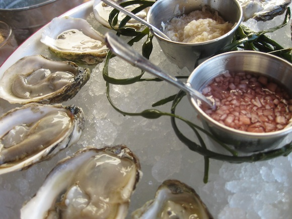 Oysters. (Photo by Peter Glawatz)