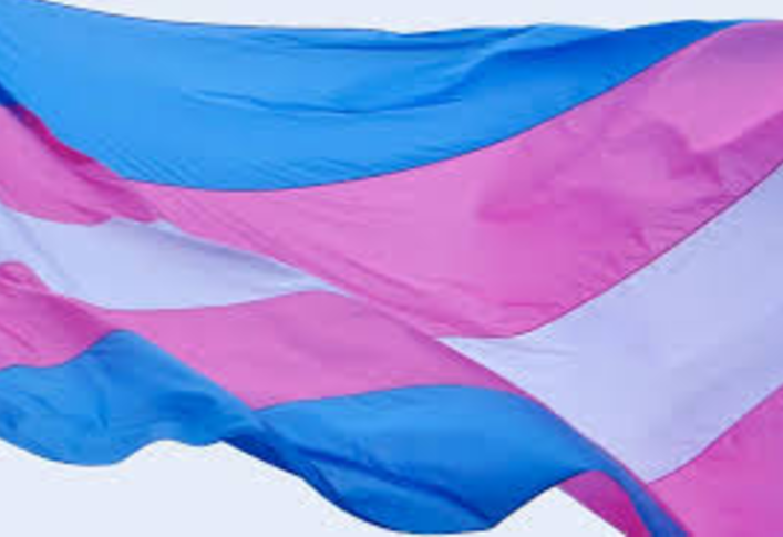 The trans pride flag was designed by Monica Helms, an openly transgender American woman, in August 1999 and exhibited at the 2000 Phoenix LGBT Pride event.